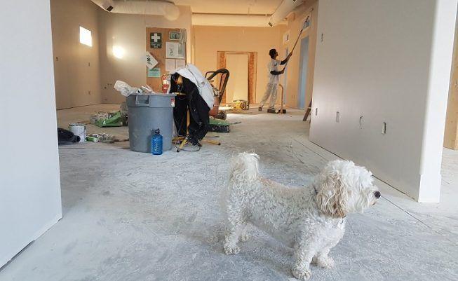 Consejos reformar hogar pocos metros